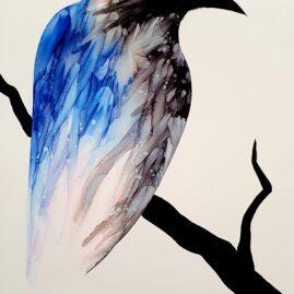 Raven on watch